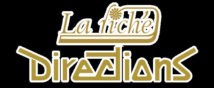 La Riche -  Directions צבעי שיער