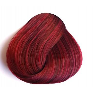 צבע חציל כהה - Dark Tulip