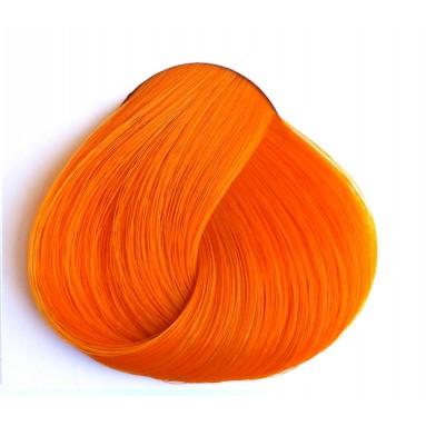 צבע כתום משמש - Apricot