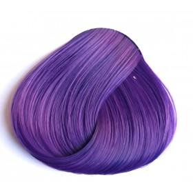 גווני סגול לשיער